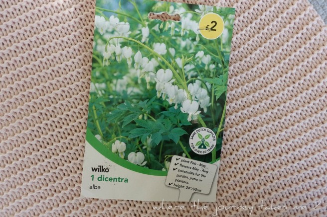 White Dicentra